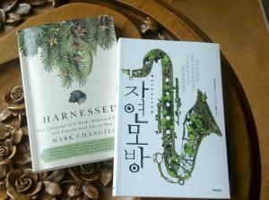 harnessed_korea